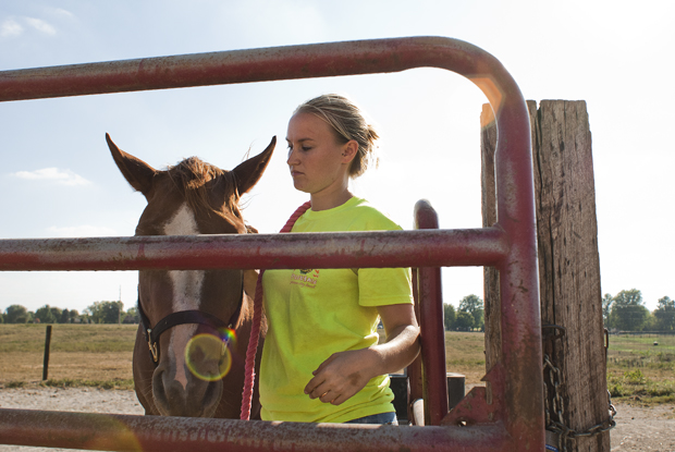 Mt. Juliet, Tenn., senior Paige Montgomery bridles a horse before stabling it for the night at the WKU Farm on Wednesday afternoon. Besides her work on daily upkeep with the horses, she is also on WKU's equestrian team and helps teach equine classes.