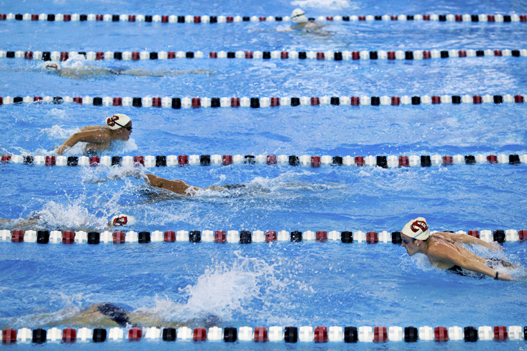 The+WKU+swim+team+practices+Tuesday+in+the+Powell+Natatorium+in+preparation+for+their+home+meet+on+Saturday+against+Southern+Illinois.+The+meet+will+also+be+Senior+Day.