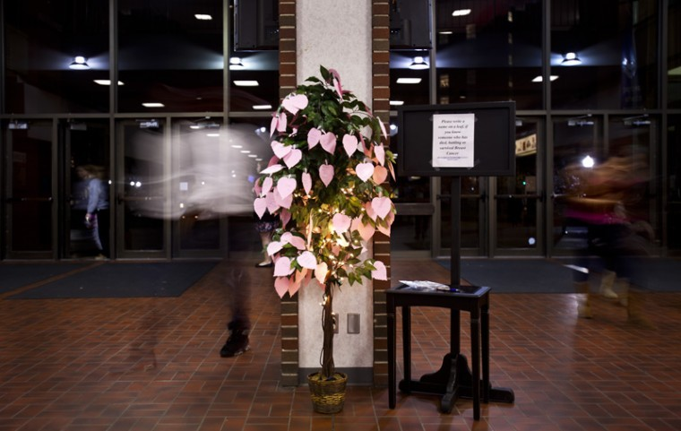 A tree has sat in the lobby of Downing University Center this week. Inspired by Breast Cancer Awareness month (October), people have left pink leaves on the tree to raise awareness for the disease and remembers those lost to it.