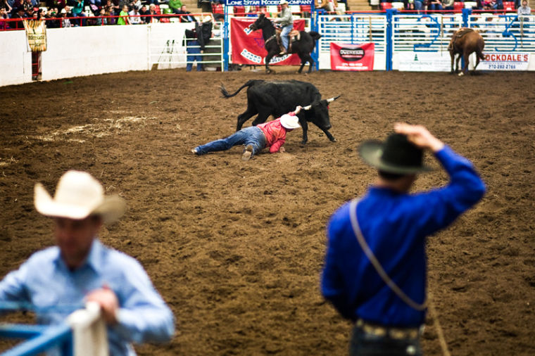 %C2%A0A+rodeo+participant+attempts+to+tackle+a+steer+for+the+WKU+rodeo+on+Feb.+9%2C+2013+at+the+L.D.+Brown+Agricultural+Exposition+Center.%0A