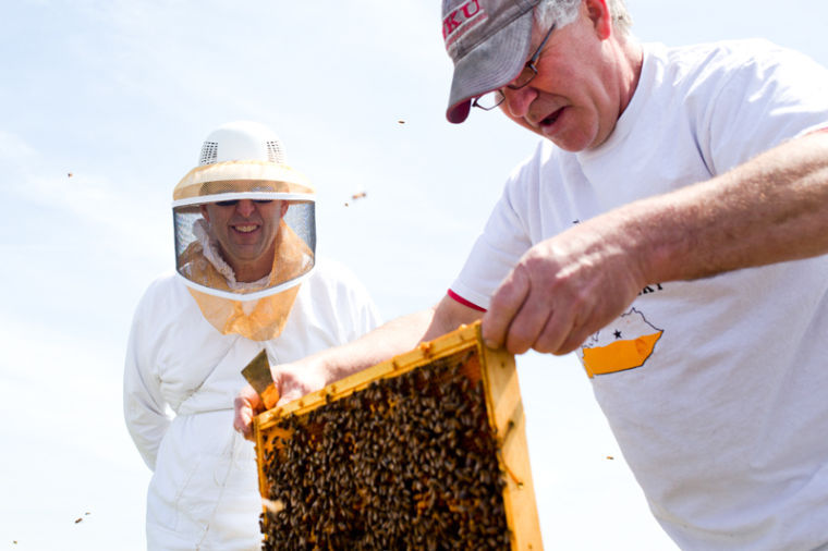 John Pace (right), manufacturing and support specialist for WKU, pulls out an example of a healthy bee colony to show new members of Big Red Beekeepers after new packages of bees were transferred to fresh hives. Jeff Motorfield (left) and Pace, serve as advisors for the bee keeping club.