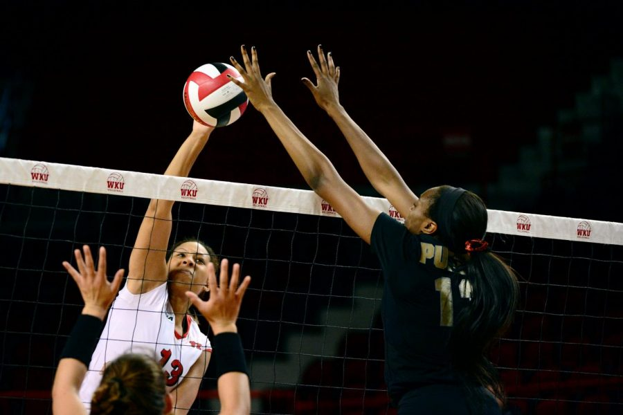 Junior middle hitter Noelle Langenkamp spikes the ball during WKU's 3-2 win over Purdue on Friday, Sept. 12 at Diddle Arena. Mike Clark/HERALD