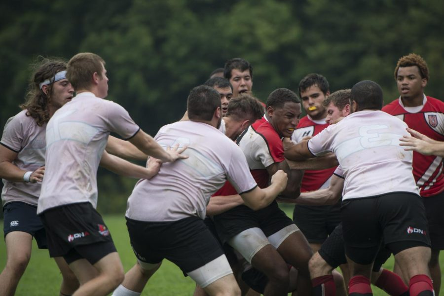 Sophomore+Jaylen+Johnson+is+tackled+during+the+WKU+rugby+teams+first+Division+I+game+against+the+University+of+Louisville+on+Aug.+30.+Harrison+Hill%2FHERALD