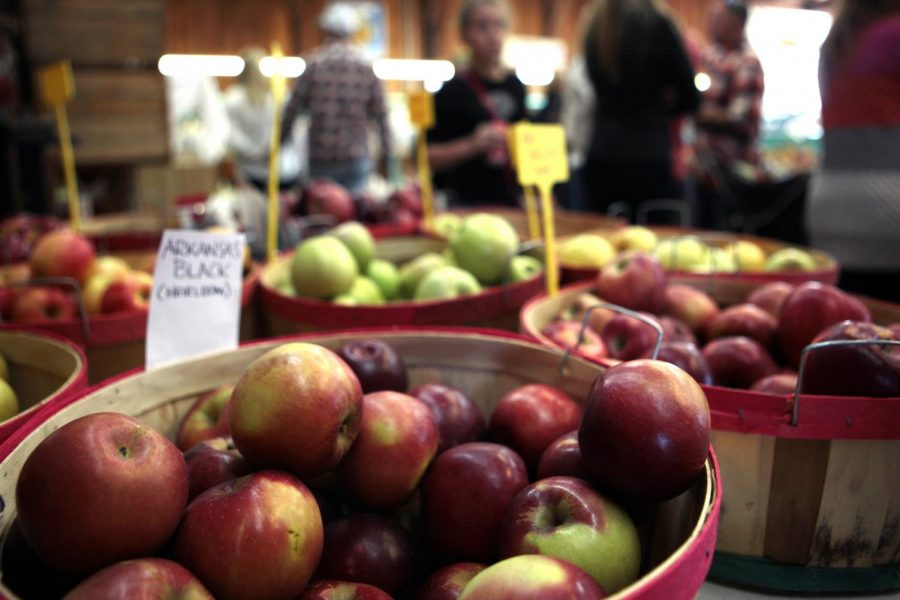 In addition to its famous apples, Jackson's Orchard grows peaches and cherries. The land has been an orchard for more than 100 years and grows 15 types of apples. Tanner Cole/HERALD