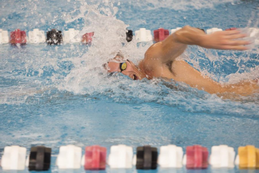 WKU+junior+freestyler+Aymeric+Le+Corno+swims+during+practice+at+Bill+Powell+Natatorium+on+Wednesday.+Tyler+Essary%2FHERALD