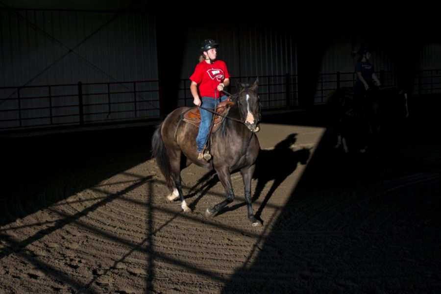 Huntingburg, Ind. freshman Claudia Gasser rides one of WKU's horses during equestrian team tryouts Tuesday, Aug. 30 at the WKU Equine Unit. Riders of all levels were welcome to tryout, the team accepts members of all skill levels, from beginner to advanced. Kathryn Ziesig/HERALD