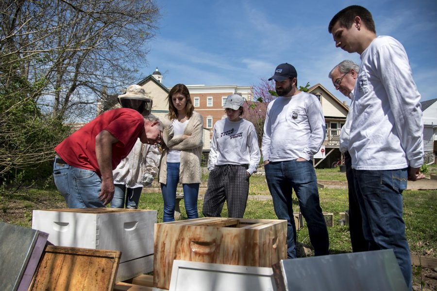 The+WKU+Big+Red+Beekeepers+received+two+donated+packages+from+the+Kelley+Bee+Company+filled+with+three+pounds+of+Italian+Honey+bees+on+Sunday+at+the+Office+of+Sustainability.+The+Beekeepers+meet+every+second+Friday+at+1%3A30+p.m.+to+discuss+environmental+improvements+that+each+species+of+bees+has+to+offer.