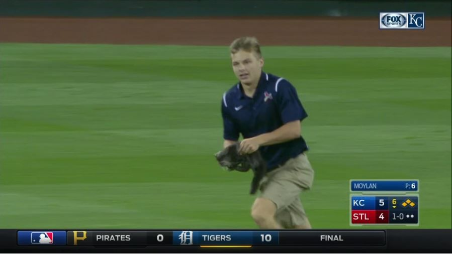 Lucas+Hackmann+during+his+heroic+rescue+of+%23rallycat+during+the+Cardinals+v.+Royals+game.+Screenshot+courtesy+of+ESPN.%C2%A0