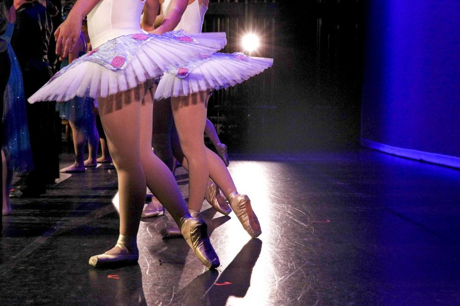 A performance is presented during WKU's Theatre and Dance Department on Jan. 16, 2014. The annual WinterDance is set to be held on Nov. 17-19, 2017 in Van Meter Hall.