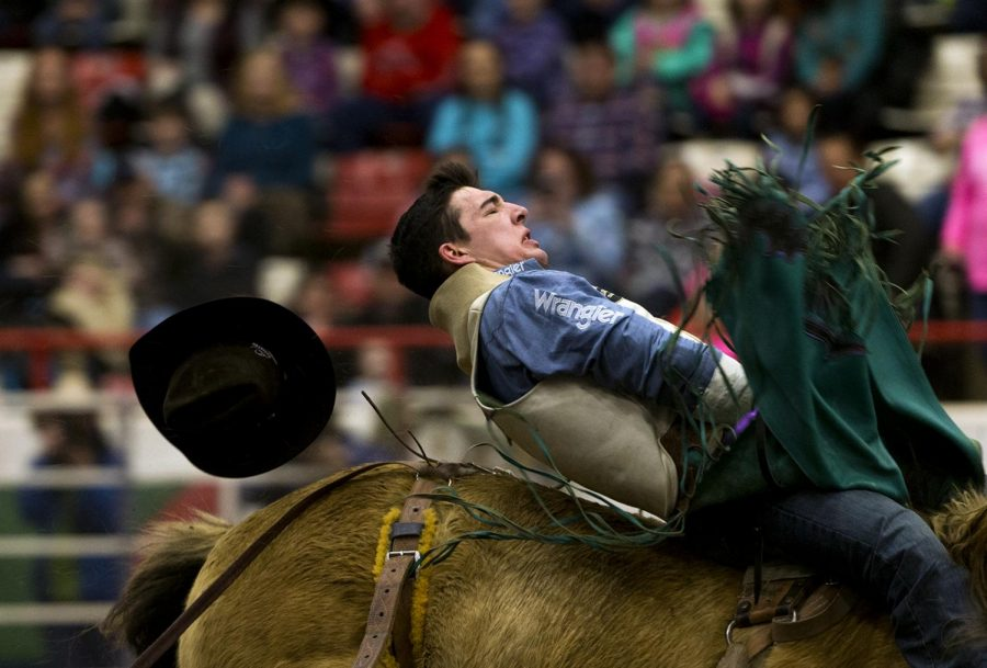 The+Lone+Star+Rodeo+came+to+Bowling+Green%2C+Kentucky+featuring+more+than+6+events+including+bareback+bronc+riding+and+bullriding.+Competitors+who+won+in+Bowling+Green+qualified+for+the+Lone+Star+National+Rodeo.