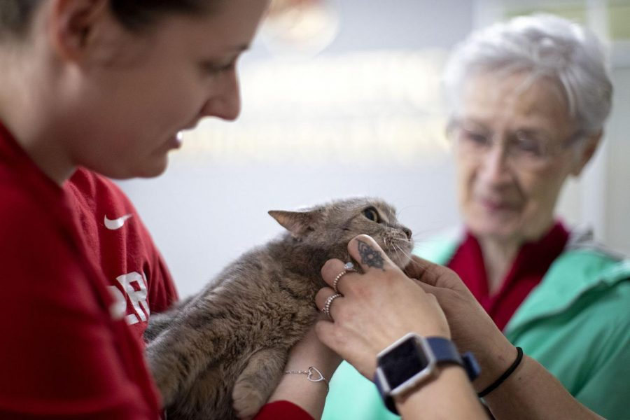 """Shelby Worthington, 25, a BG native and WKU alum, holds a cat brought into Diddle Arena for a special half off adoption pre-game event Jan. 19 in Bowling Green. """"I come to all the games,"""" Worthington said. """"The cats are an added treat today."""""""