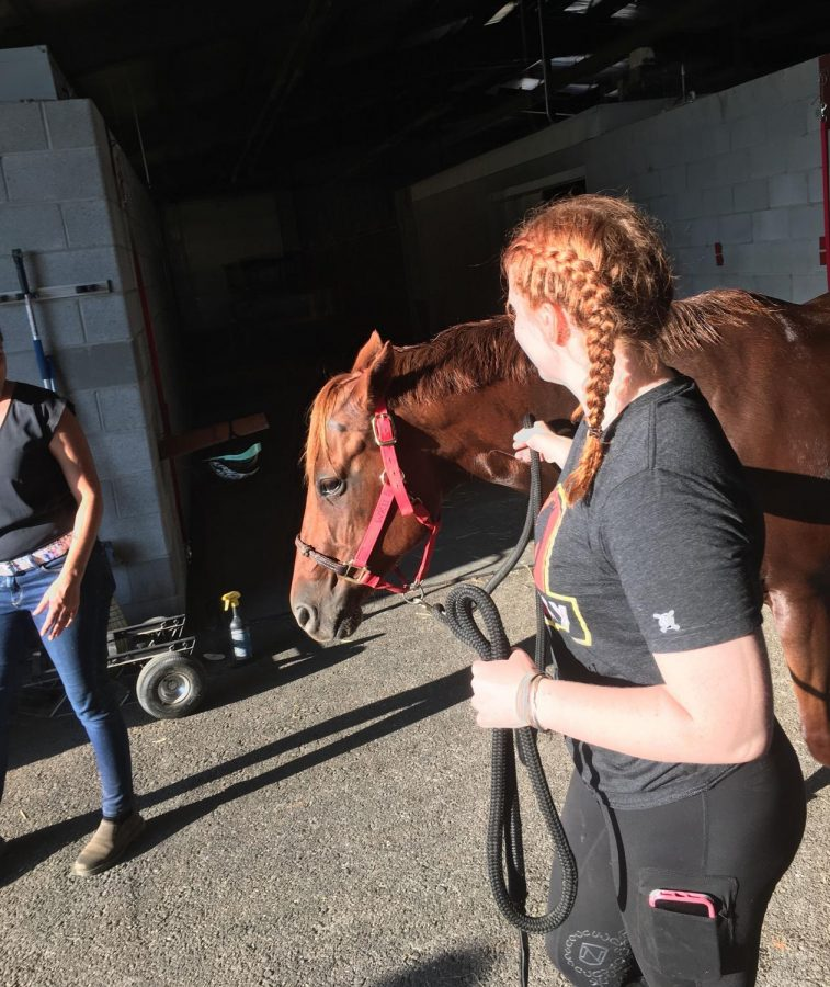 Emma Voils, an agriculture education major, leads Charlie the horse out of the stable after his bath and scrubbing, which keeps him from overheating after a day of riding.