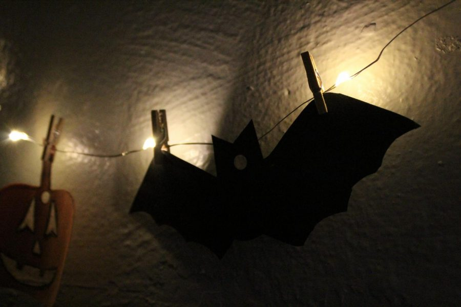 Simple+bat+decorations+are+easy+to+make+for+your+home+or+dorm+room+with+little+work+and+money+spent.