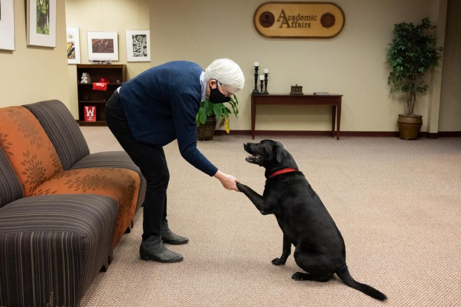 WKU Interim Provost Cheryl Stevens plays with her dog Ruthie in an office suite in the Wetherby Administration Building. On June 30, Stevens will step down from the role of interim provost and will fully retire by the end of December.