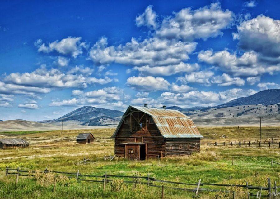 #12. Montana