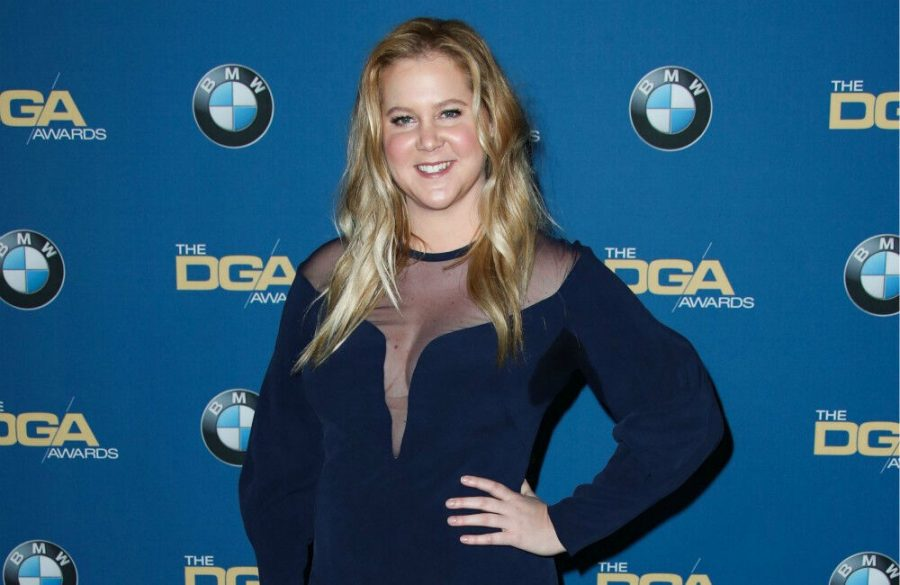 Amy+Schumer+wears+%27fanciest+dress%27+to+get+COVID+vaccine