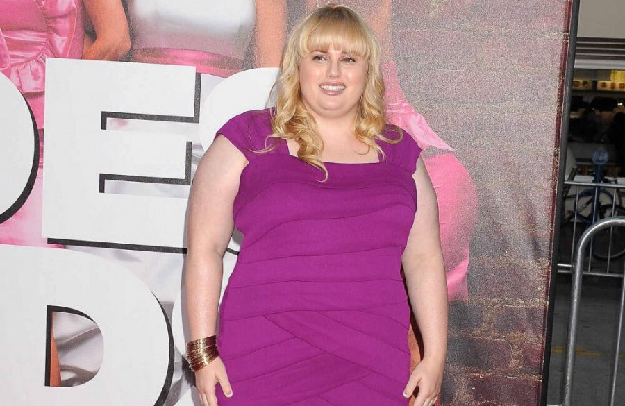 Rebel Wilson was meant to play Melissa McCarthys character in Bridesmaids