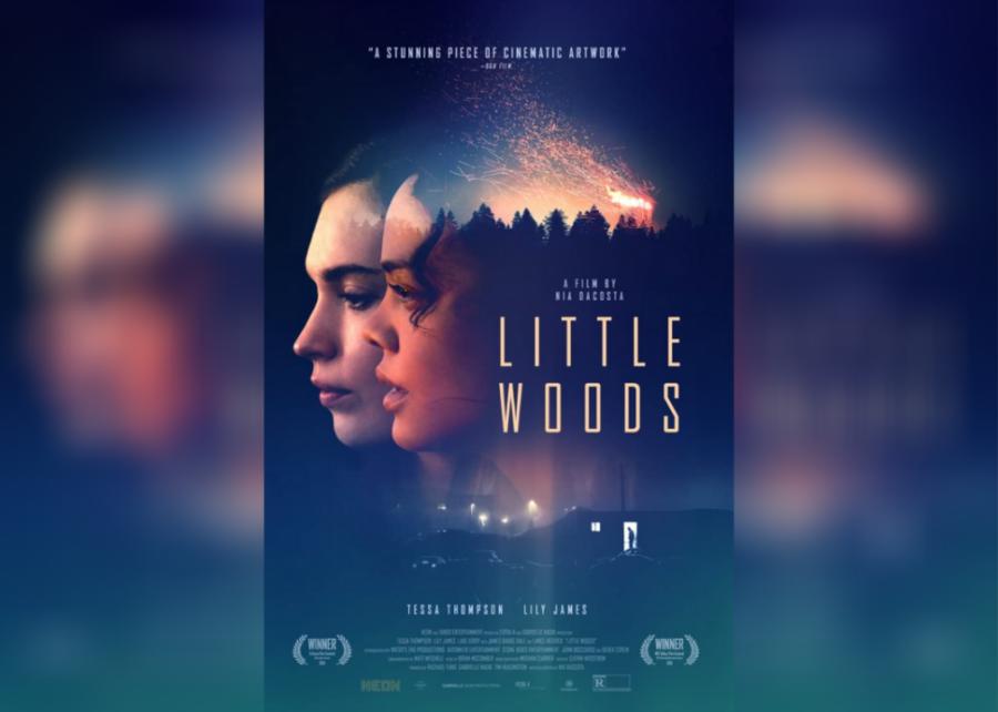 #62. Little Woods (2019)