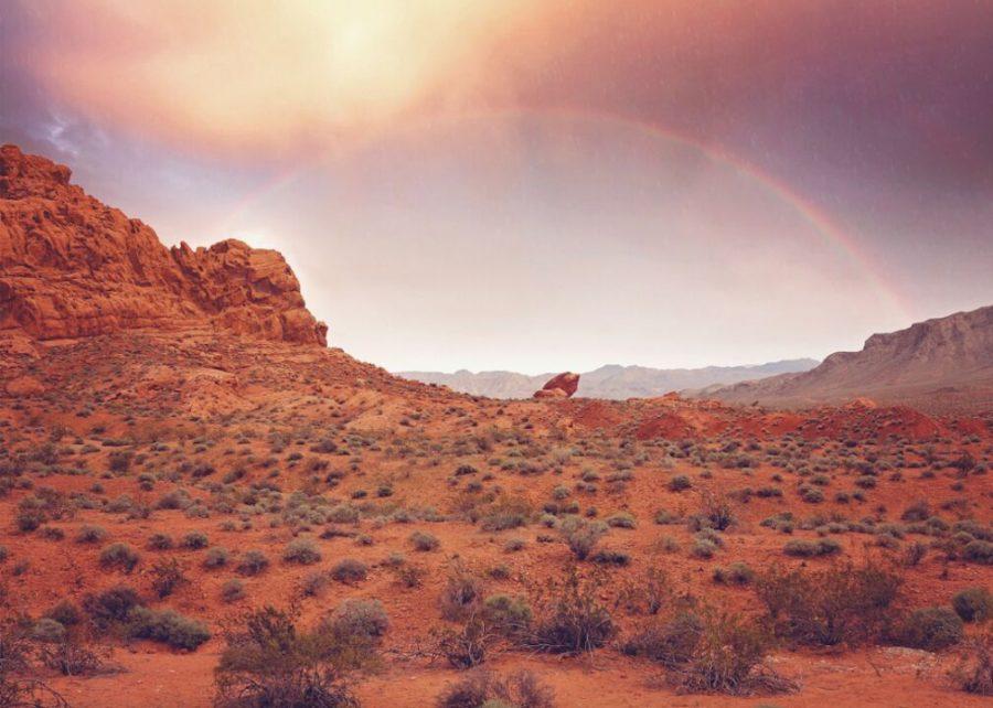 #2. Nevada