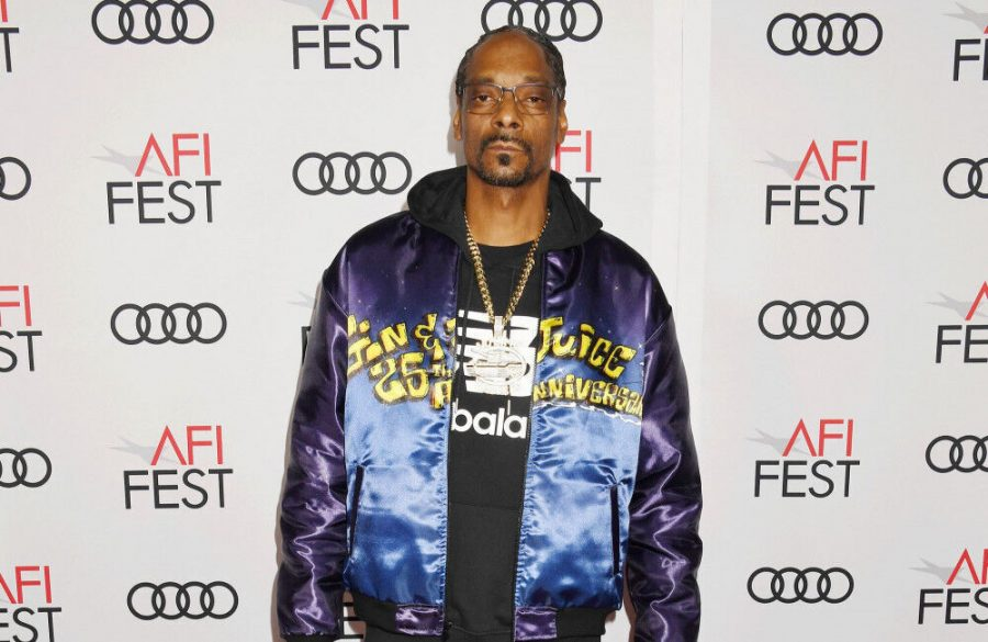 Snoop Dogg joins the cast of Pierre the Pigeon-Hawk