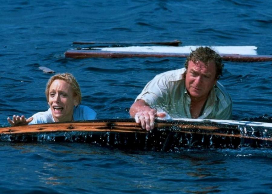 #16. Jaws: The Revenge (1987)
