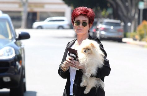 Sharon Osbourne plans tell-all book