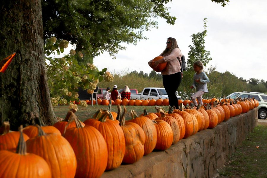 5 activities in Bowling Green to kick off the fall season